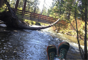 Tumble Creek in Shevlin Park (Photo: Marlys Johnson)